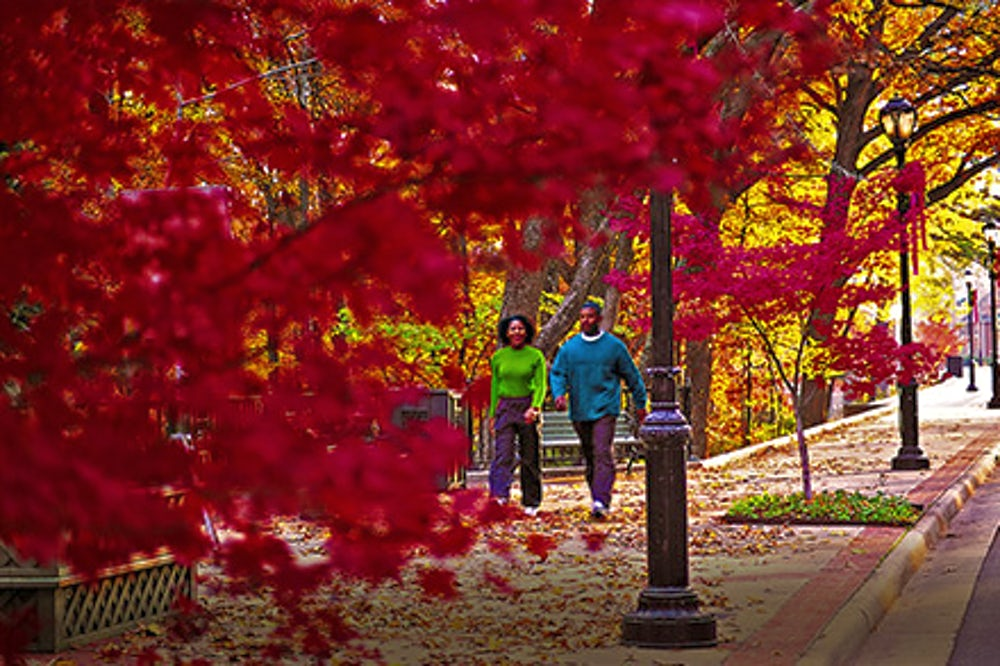 Couple walking through the fall foliage in Little Rock