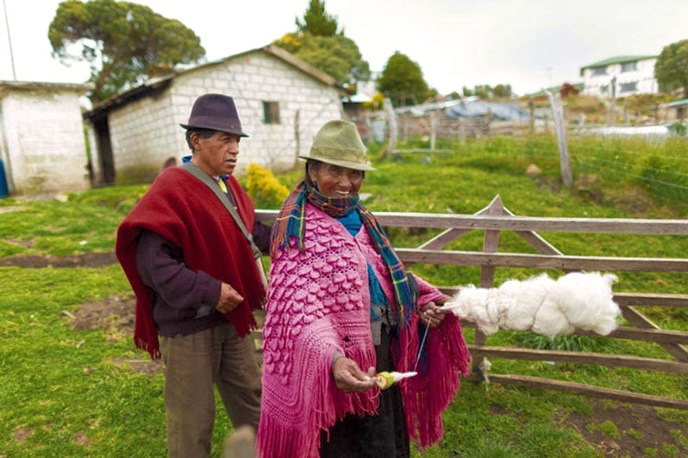 Ecuadorian farmers collect wool