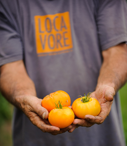Our sustainable food production system is helping re-ignite the competition among small-scale Arkansas farmers and strengthen our community by connecting you to the land and local farmers.