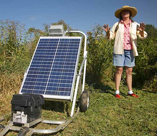 Solar panel North Carolina