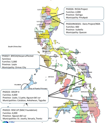 Heifer projects in the Philippines