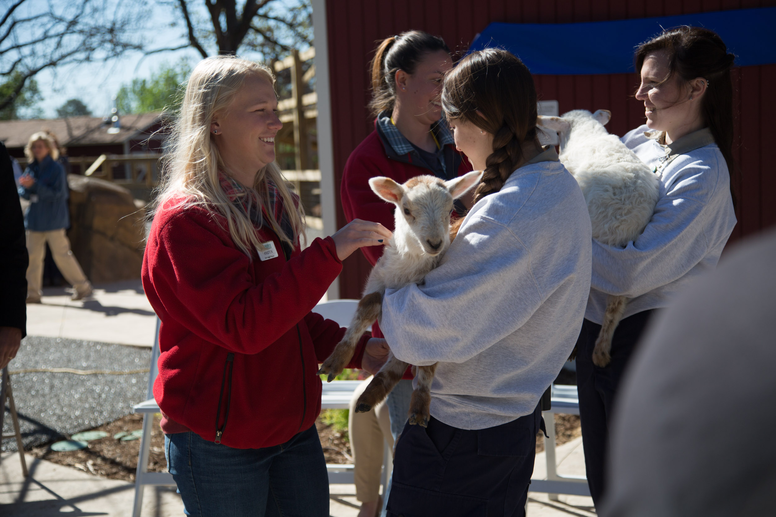 Heifer Ranch caretakers Pass on the Gift of lambs to the Little Rock Zoo.