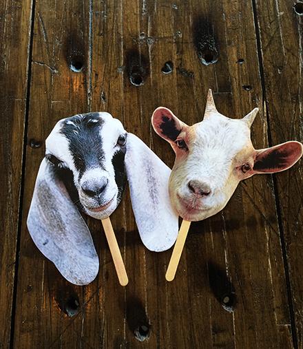 Two finished goat masks