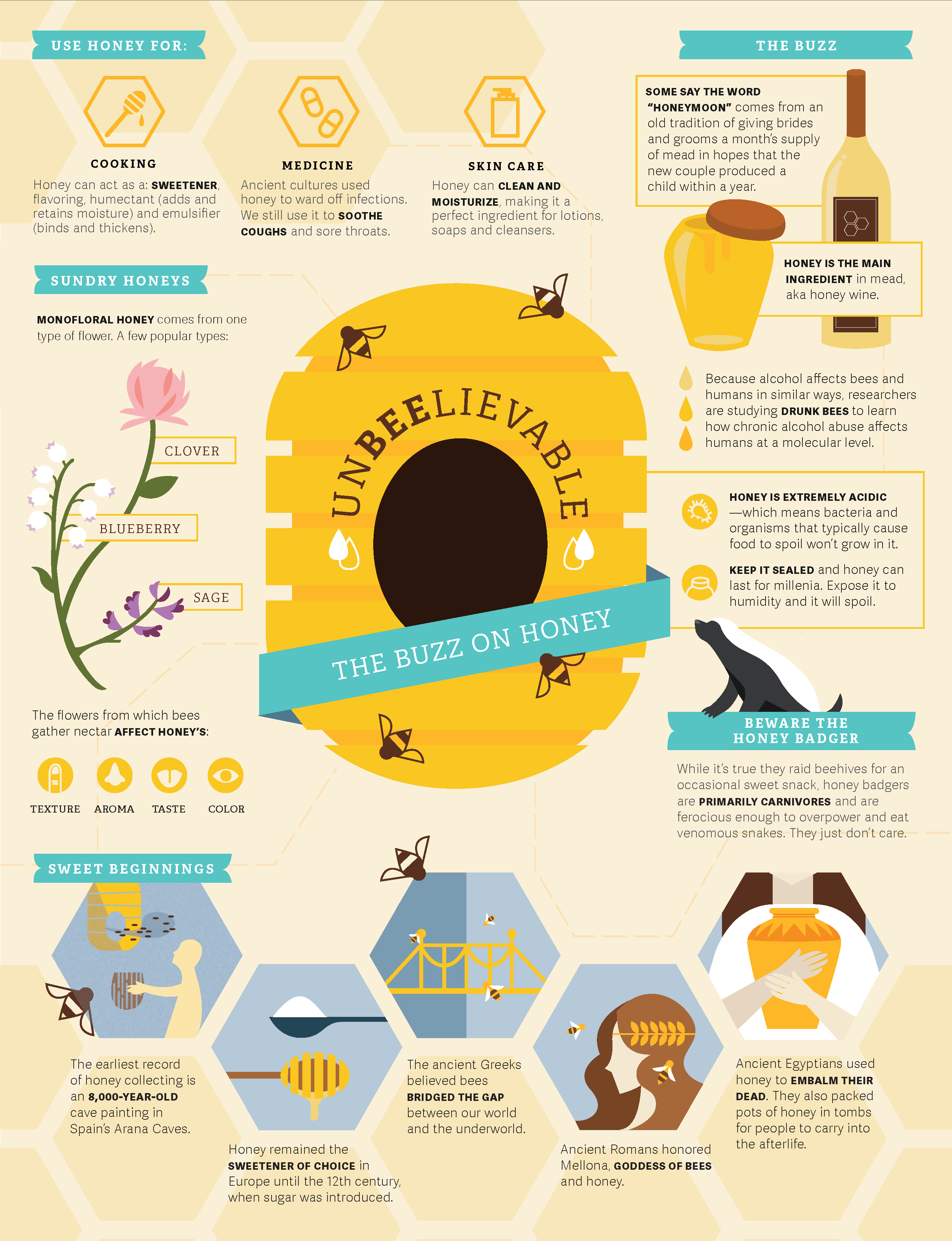 infographic about honey