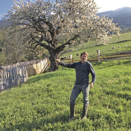 A farmer points to his fenced-in apple trees.