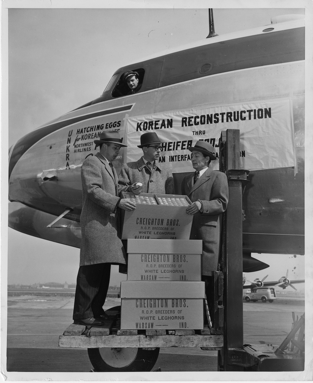 A black and white photo of three men standing by a plane, holding crates of eggs to donate.