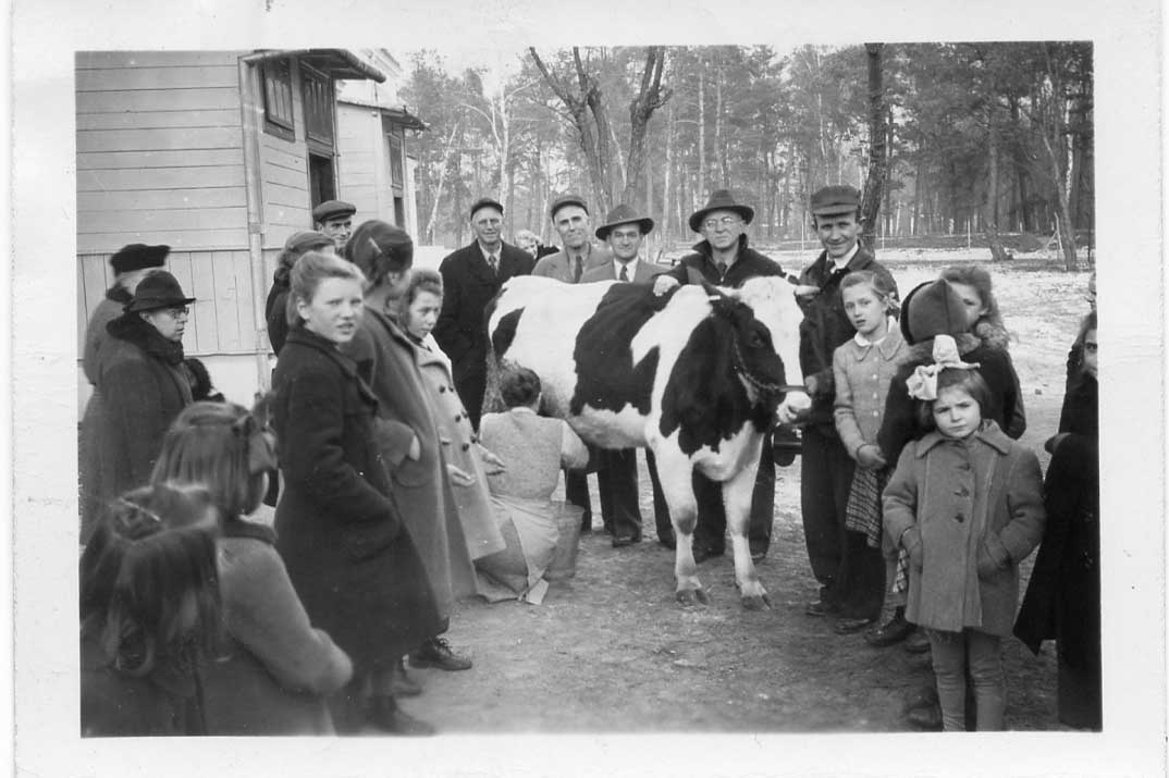 Hope the cow was given to the Konstancin Orphanage outside of Warsaw, Poland. It's a picture taken on Christmas Day 1946.