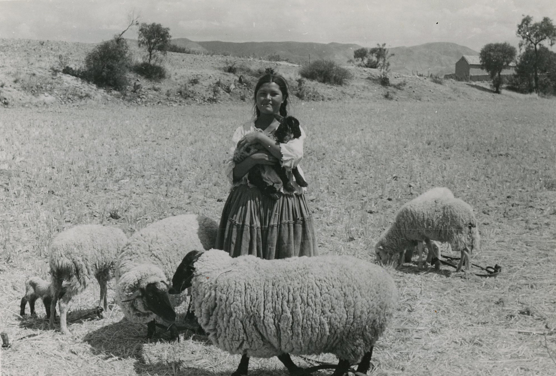 A black and white image of an indigenous Bolivian woman holding a day-old sheep, donated by Heifer Project.