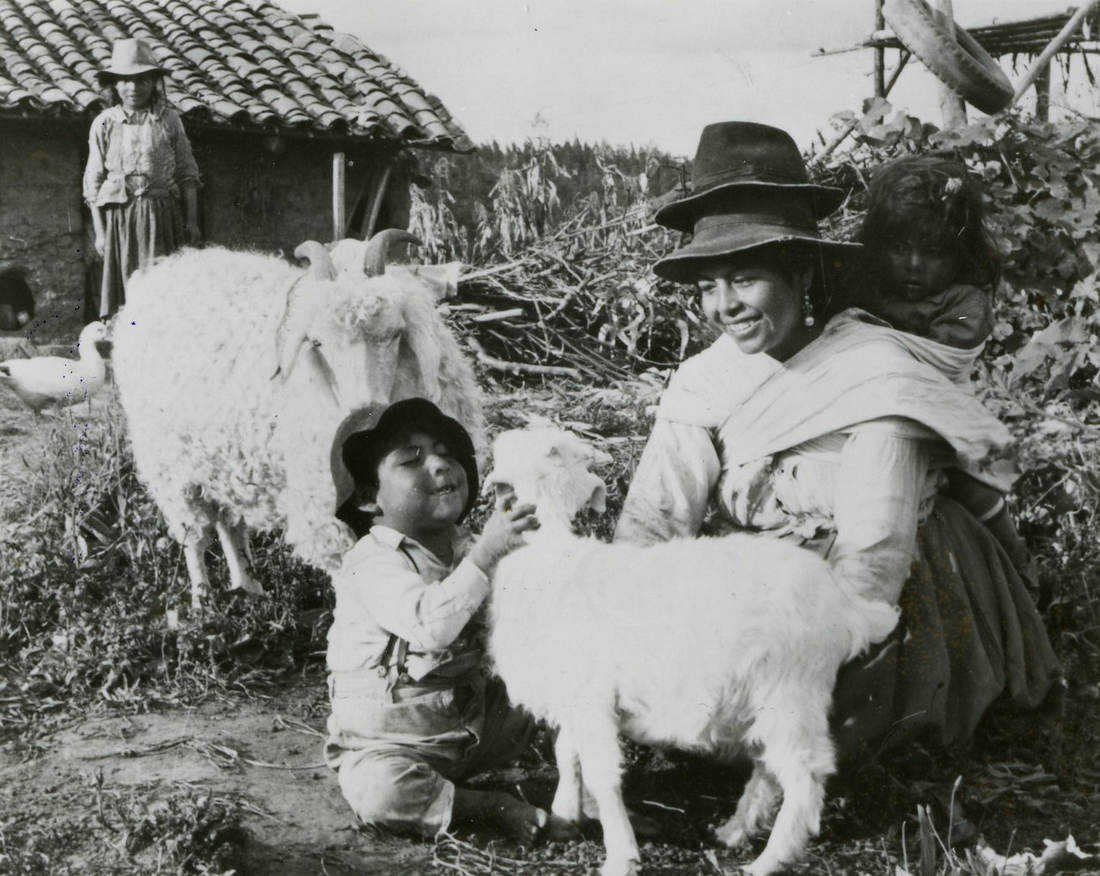 A child pets a Heifer-donated goat as his mother looks on.
