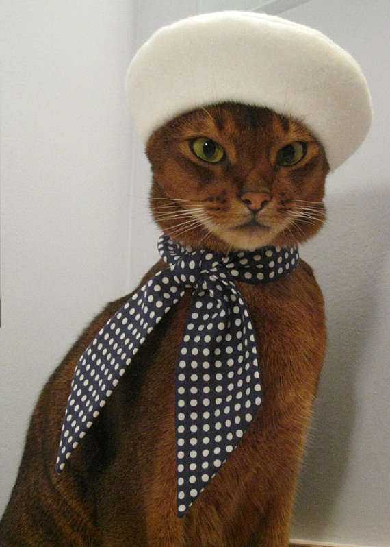 A tabby cat wears a white baret and black polka dotted ascot.
