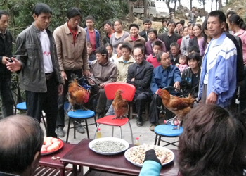 Lin Fengcheng teaching and presenting his chicken-rearing skills.