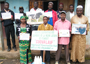 Members of the Societe Des Eleveur De Vache Laitier De Foumbot agricultural cooperative