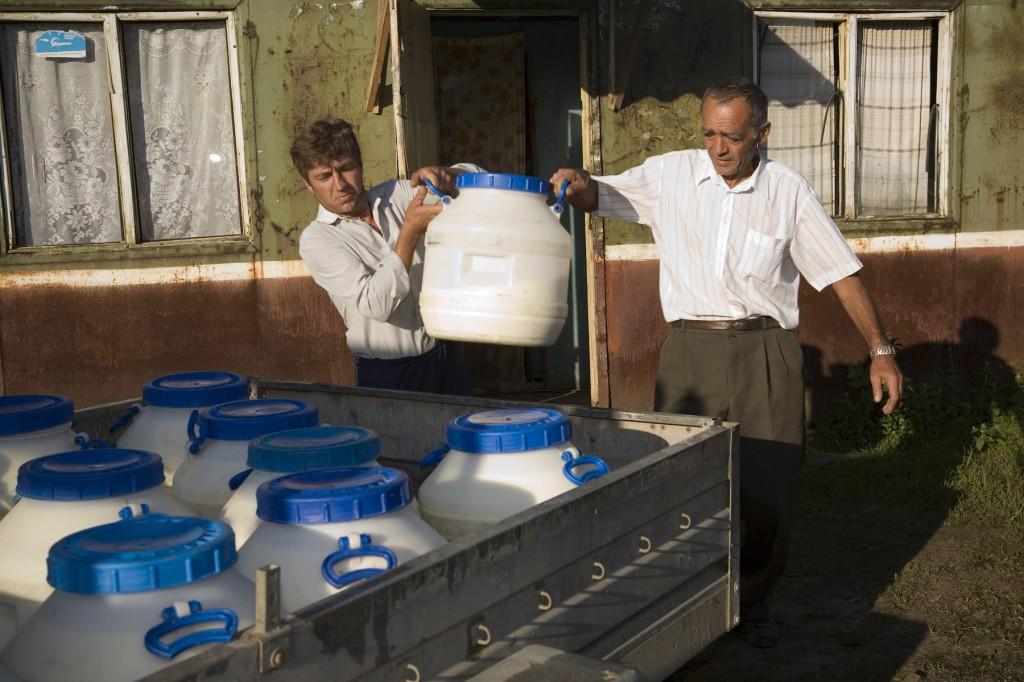 Cooperative milk collection