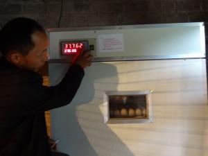 Zhang Hui managing the incubator