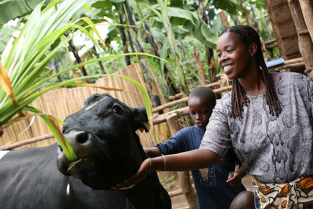 Peace in Rwanda.