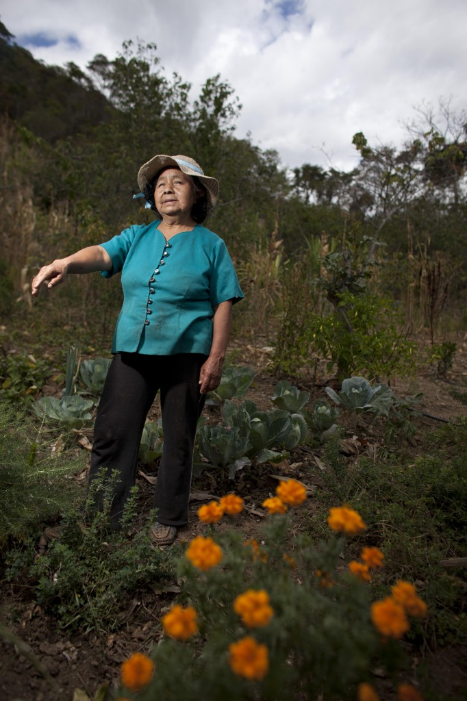 Self-Reliance in Ecuador's Dry Forest