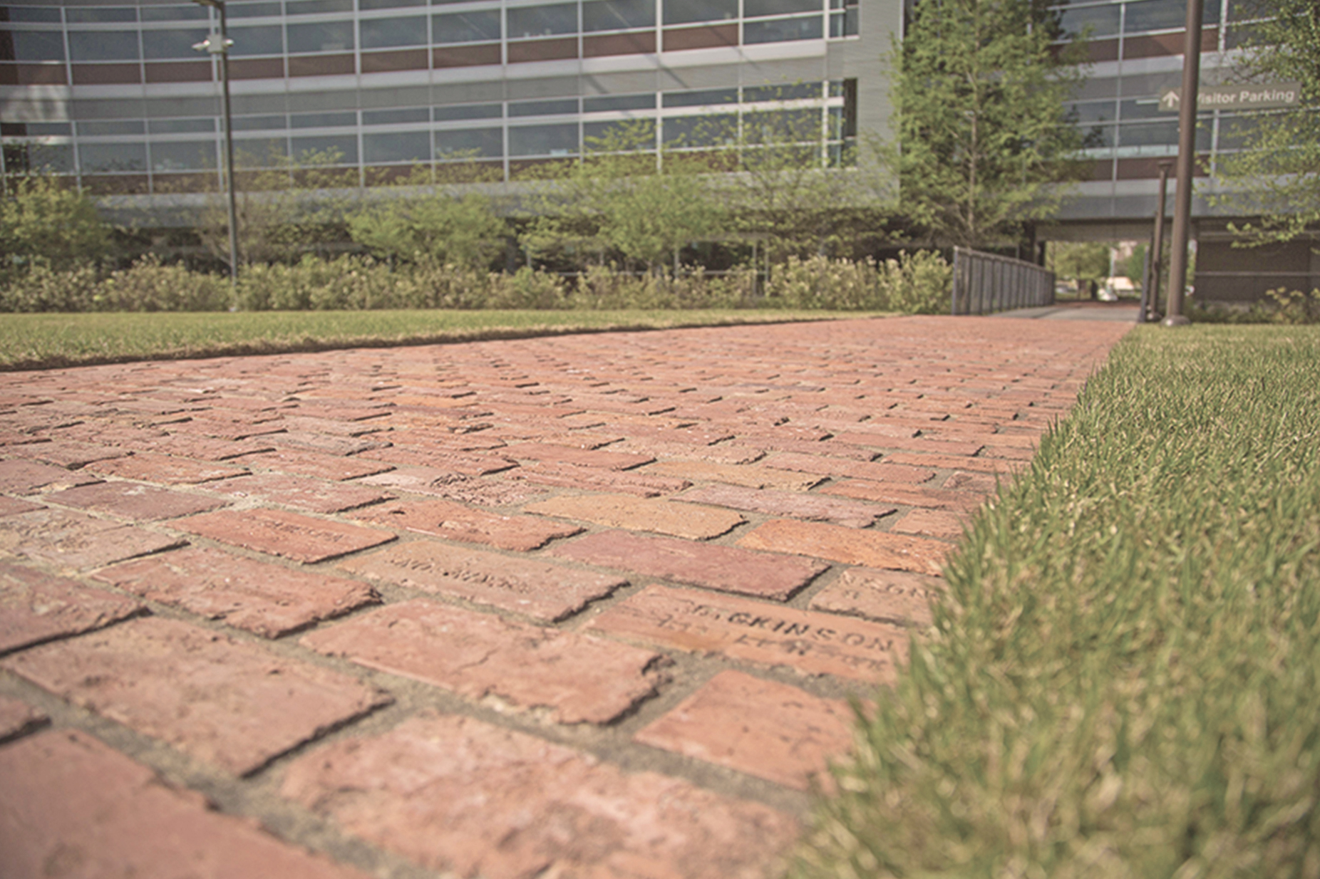 Salvaged bricks make up the walkway to Heifer Headquarters.