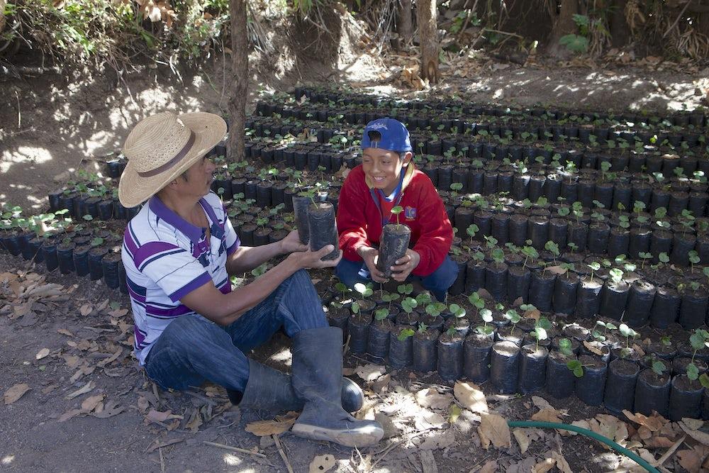 Lenca II, Honduras farmers