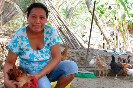 Heifer Mexico project to benefit from grant from Walmart Foundation