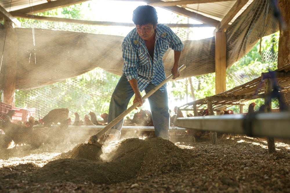 A man uses a tool to mix the bedding in his family's chicken coop.