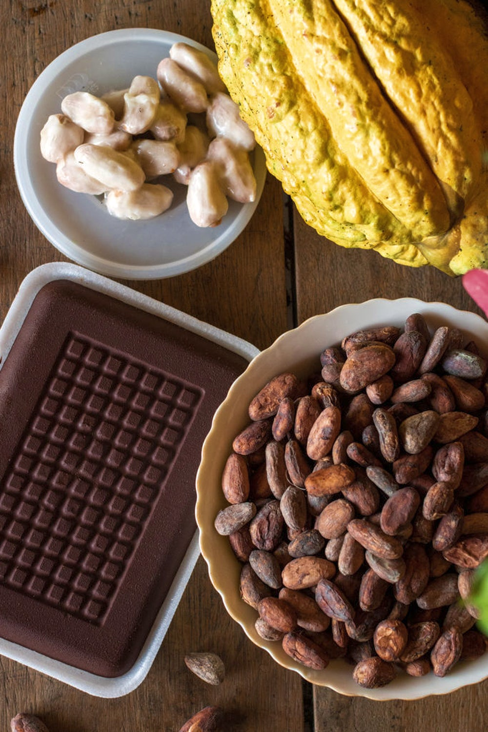 A yellow cacao pod, cacao beans covered in white fruit, roasted cacao beans and a finished chocolate bar gathered on a wood table.
