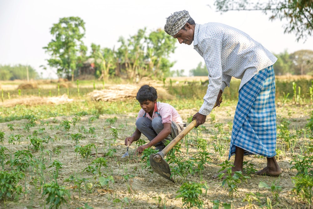 A man hoes a field while his son crouches on the ground, ready to plant seeds in the freshly-dug earth.