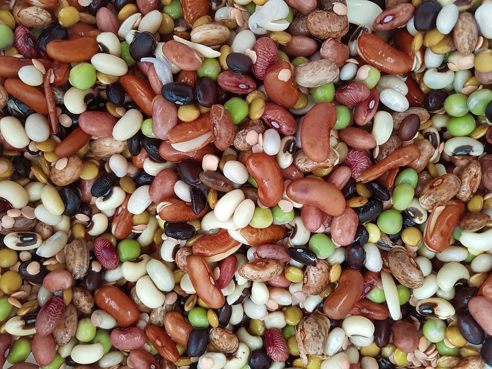 A close up shot of assorted beans