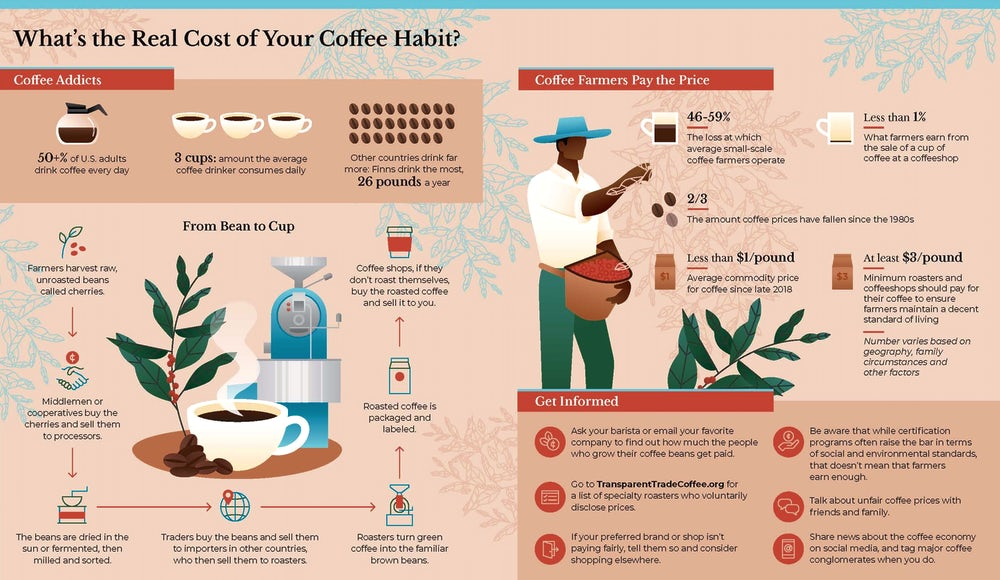 Infographic of the coffee production cycle and statistics about coffee prices.
