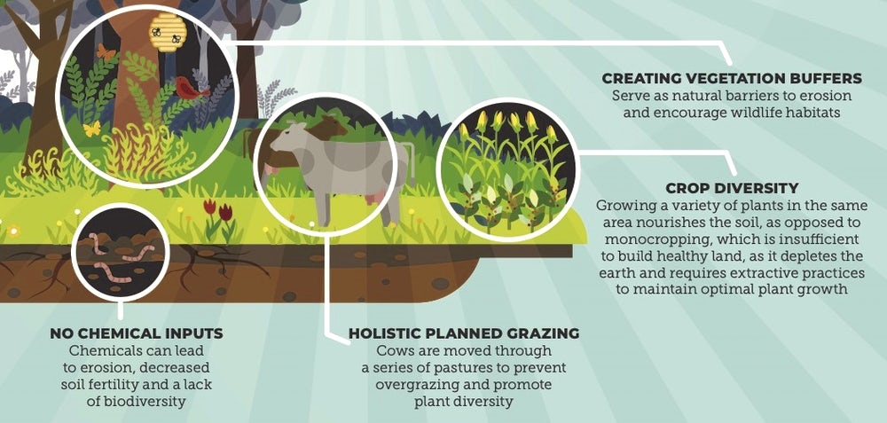 examples of regenerative agriculture