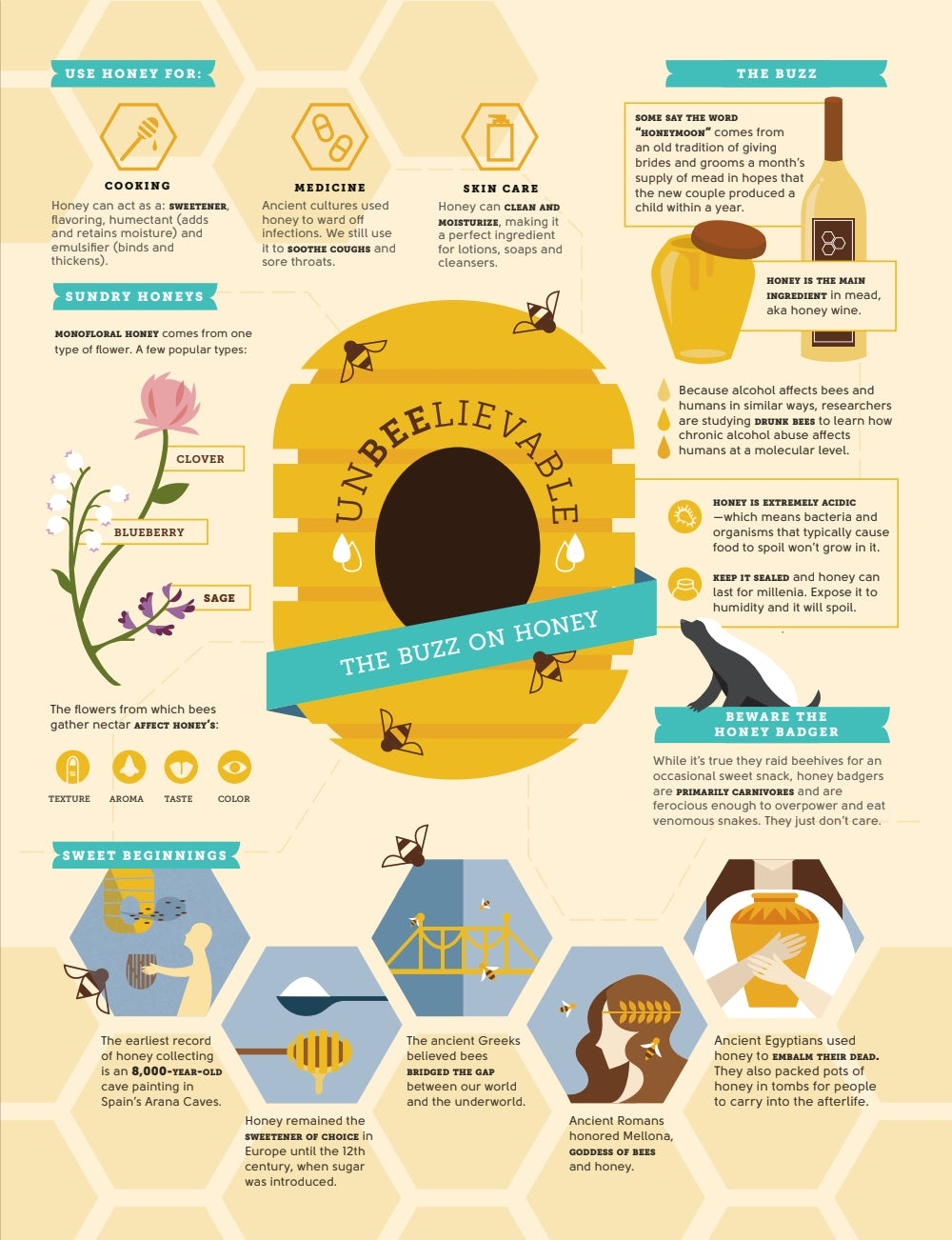 An infographic illustrating various facts about honey.