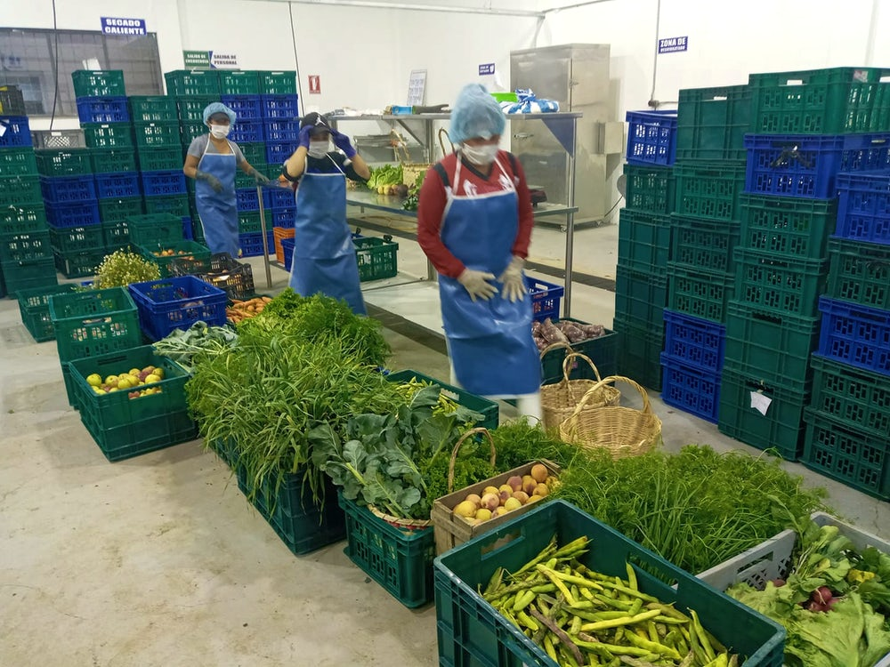 Agricultural workers wearing masks and hair nets package produce.