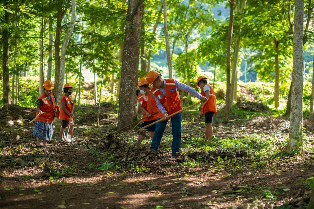 A group of people wearing bright orange vests are working on the forest floor to reduce the risk of forest fires.