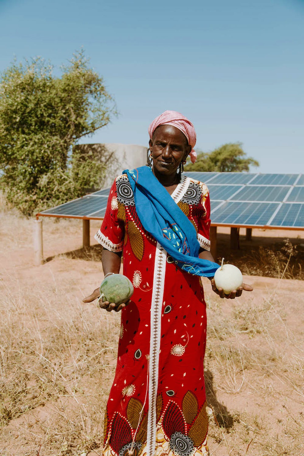 Penda Sow stands in front of the solar panels that power the water pump at a community garden tended by the women of Younoufere. Photo by Lacey West.