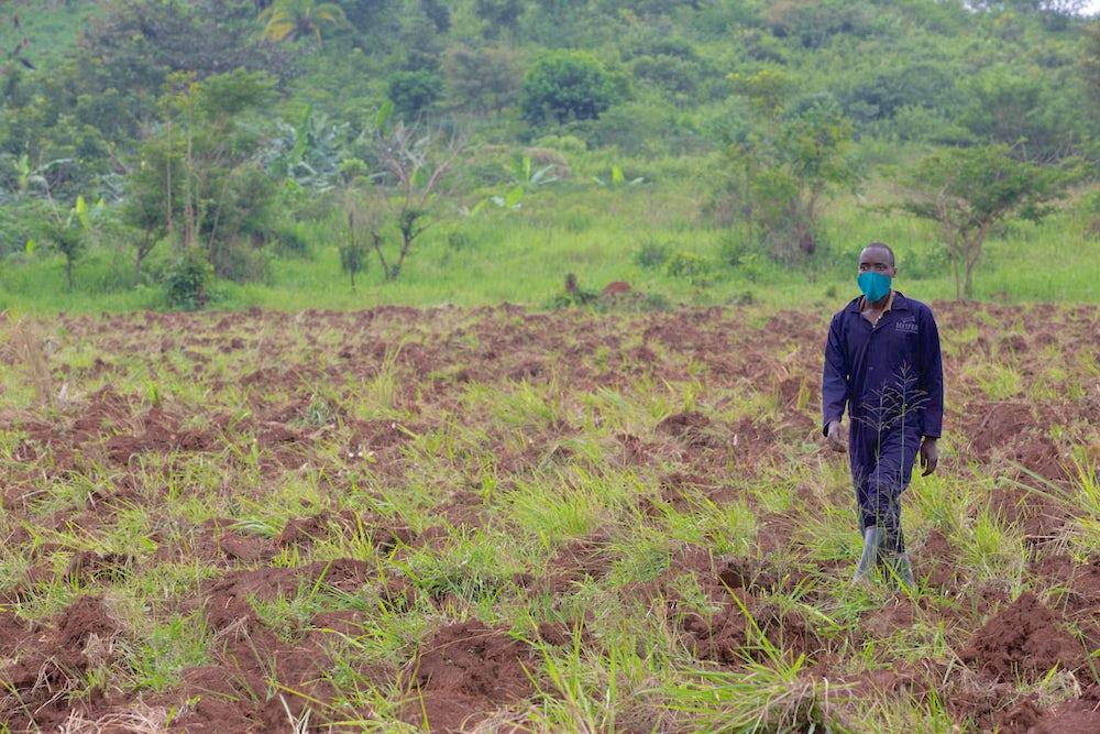 A youth farmer walks through his field in Uganda.