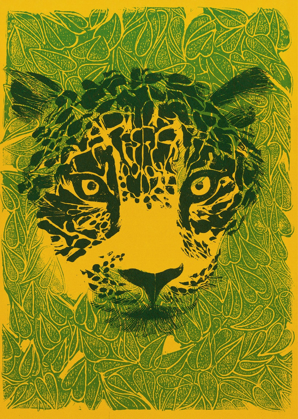 An illustration of a jaguar's face from The Jungle by Helen Borten